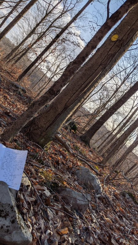 How I Wrote the Play at the Ridgline #Poetryport by painting a picture with words, a paper journal in hand, dog at my side, and falling sun